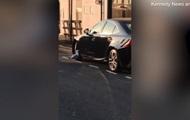 Атаковавшую люксовое авто чайку сняли на видео