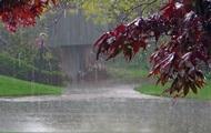 Погода в Україні: +26, дощі і грози