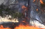В Херсонской области третий день тушат пожар