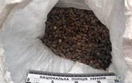 В Ровенской области изъяли пять мешков янтаря