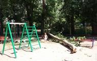 В Одессе на две детские площадки рухнули ветки деревьев