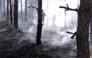В Херсонской области тушат восемь гектаров леса