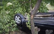 У Кривому Розі п'яний водій на смерть збив двох жінок