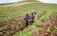 В Нигерии за неделю от нападений пастухов погибли более 200 человек