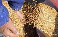 Украина сократила экспорт зерна