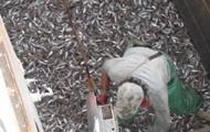 В Азовском море СБУ задержала два судна