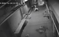 Танец вора перед взломом попал на видео