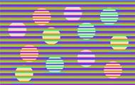 Сеть удивила новая оптическая иллюзия