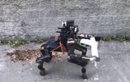 В Италии создали робота-кентавра