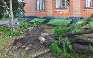 В Житомирской области ураган повредил крыши домов