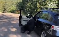 В США медведь разгромил машину и заснул на сидении
