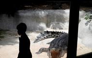 В Уганде крокодилы выудили жителей покинуть деревню