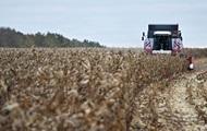 Украина ожидает рекордный урожай кукурузы