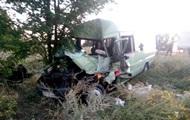 Под Одессой маршрутка врезалась в фуру: водитель погиб, 7 пострадавших