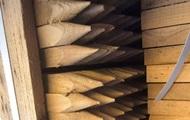 З України до Польщі намагалися вивезти 20 тонн цінної деревини