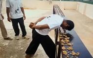 В Индии установили рекорд по разбиванию орехов