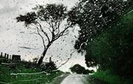 Погода на неделю: дожди и потепление