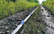 В Кривом Роге поезд отрезал голову мужчине