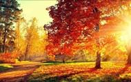 Готовимся к осени: как не захандрить и не впасть в депрессию