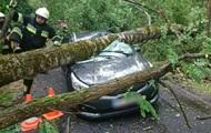 По югу Польши пронесся мощный ураган