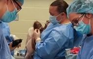 В США сделали кесарево сечение самке орангутанга