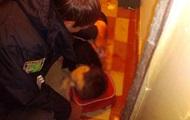 В Краматорске в доме нашли мертвую женщину и раненого ребенка