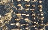 В Харьковской области во дворе дома нашли более 200 боеприпасов