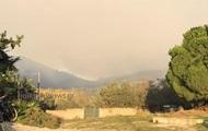 На севере Греции вспыхнули лесные пожары