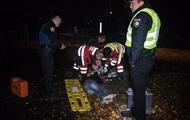 В Киеве полицейский автомобиль сбил грабителя