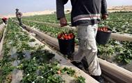 Первые в ЕС. Рост трудовой миграции из Украины