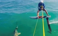 Серфер на скорости врезался в акулу