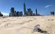 В Австралии нашествие медуз: власти закрыли популярные пляжи