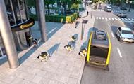 В США роботов-собак научат доставлять посылки на беспилотниках