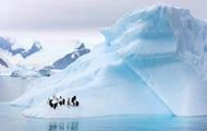 Площадь ледового покрова в Антарктике рекордно уменьшилась