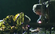 В Нидерландах мужчина накрыл собой бомбу и лежал так три часа