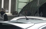 В центре Киева на улице заметили енота