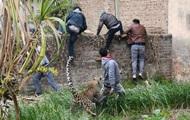 В Индии леопард напал на деревню: четверо пострадавших