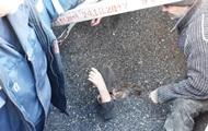 В Запорожской области пенсионерку спасли из цистерны с семечками