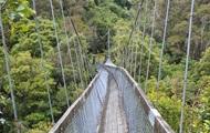 В Китае рухнул канатный мост с туристами