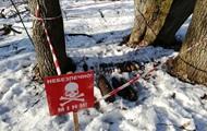 В Киевской области нашли 27 боеприпасов времен Второй мировой