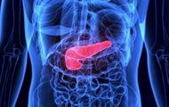 Ученые напечатали первую полноценную поджелудочную железу