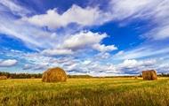 Чиновники Академии аграрных наук разворовали гектары земли под Киевом – САП
