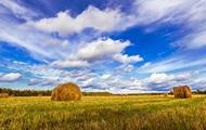 Хищение земли под Киевом: задержаны девять членов Академии аграрных наук