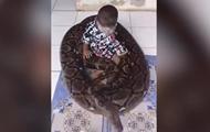 Игра ребенка с огромным питоном попала на видео