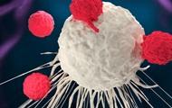 Ученые запрограммировали рак
