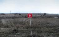 За год жертвами мин на Донбассе стали 70 человек - ОБСЕ