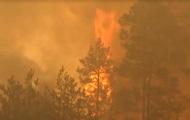 На границе с Беларусью остановили масштабный пожар