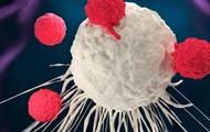 Ученые нашли способ снизить риск развития рака