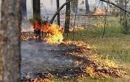 ДСНС оголосила надзвичайний рівень пожежонебезпеки