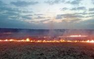 В Киевской области пожар уничтожил 10 гектаров пшеницы